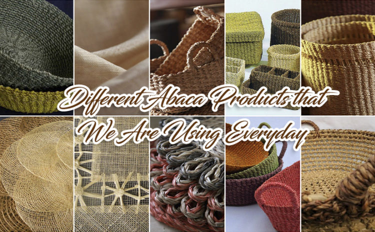 Different Abaca Products that We Are Using Everyday